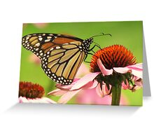 Beauty and the Blossoms Greeting Card