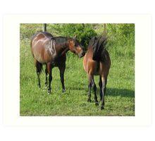 """""""Horses with Attitude no. 4, 'Don't Touch the Coat'""""... prints and products Art Print"""