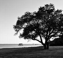 Choctawatchee Bay - Florida  by Glenn McCarthy