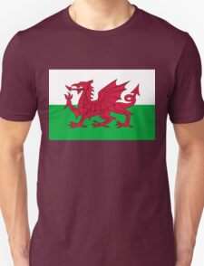 National flag of Wales - High Quality Authentic version T-Shirt