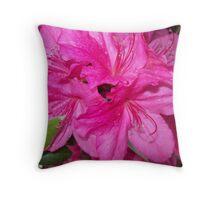 Swirl of Hot Pink Throw Pillow