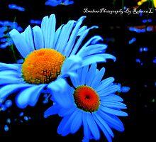 Blue world. by becca2425