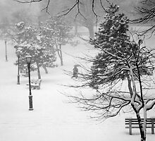 Riverside Park by DarylE