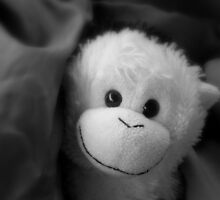 Elvis the Monkey by Mellinda