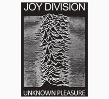 Joy Division Unknown Pleasure Album Cover by bubbleshoptee