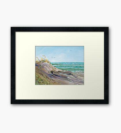 Driftwood on the Dune Framed Print