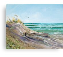Driftwood on the Dune Canvas Print