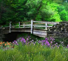 Country Bridge by Lori Deiter