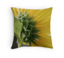 Different View of a Sunflower Throw Pillow