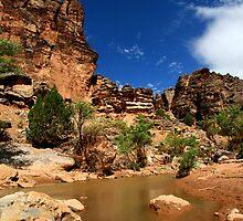 Cliffs Along the Virgin by Joe Webb