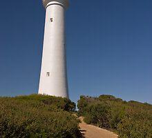 Split Point Lighthouse by DJBPhoto