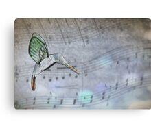 Hummingbird Melody Canvas Print