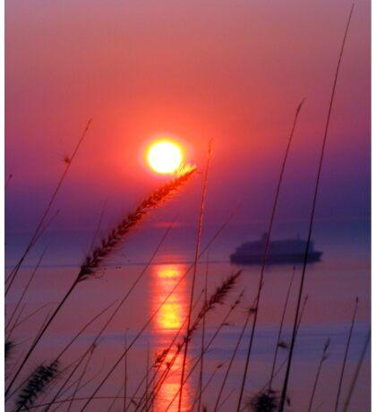 dawn in Palermo Sticker