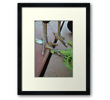 Only a fool tests the depth of the water with both feet. Framed Print