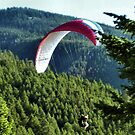 Paraglider in the Tetons #2 by JenLand