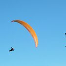 Paraglider in the Tetons #3 by JenLand