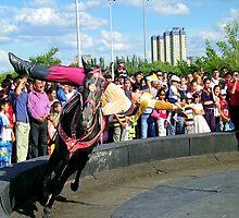 Riding Back Saddle by KZBlog