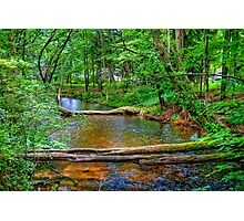 Crystal River-2 Photographic Print