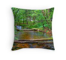 Crystal River-2 Throw Pillow