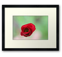 The end of a great artwork - red whirlwind in a green paradise Framed Print
