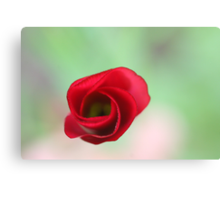 The end of a great artwork - red whirlwind in a green paradise Metal Print
