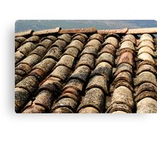 old roof tiles texture Canvas Print