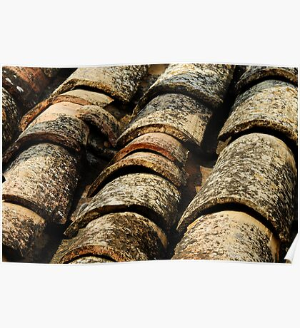 old roof tiles texture Poster