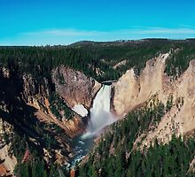Yellowstone x Lower Falls by Leah Flores