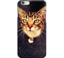 Lily the Cat iPhone Case/Skin