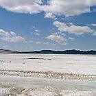 The Salt Flats by Mike Pesseackey (crimsontideguy)