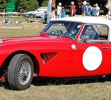 Classic Austin Healey by Paul Morley