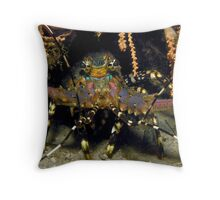 Painted Lobster ~ Halifax Park Throw Pillow