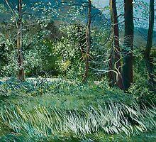 Mountain Meadow by Sharole Ewing
