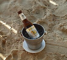 Beer Ice Bucket by Fiona Allan Photography