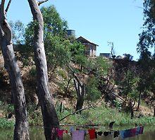 Washer day by Lozzar Landscape