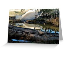 Fallen Tree at the Spillway Greeting Card