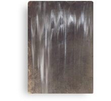 Raw Umber in the Rain Canvas Print