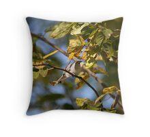 Blue Gray Gnatcatcher Throw Pillow