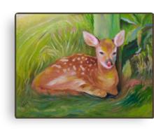 Baby Joy! Canvas Print