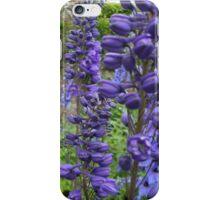 Delphiniums #2 in Harmony Garden iPhone Case/Skin