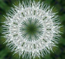 Snowflake by wyvernsrose