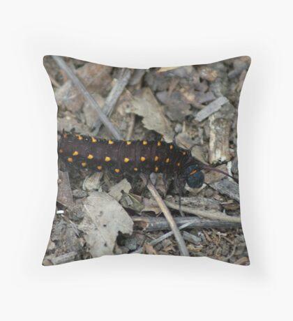 Wannabe Butterfly Throw Pillow