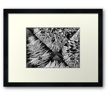 Fractured Beauty Framed Print