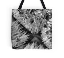 Fractured Beauty Tote Bag