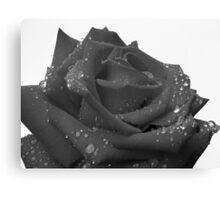 Ruby Rose - 1 Canvas Print