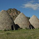 Ward Charcoal Ovens by TingyWende