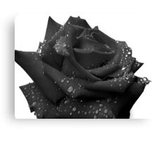 Ruby Rose - Dark Canvas Print