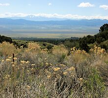 Nevada Vista by TingyWende