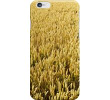 Fields of Gold iPhone Case/Skin