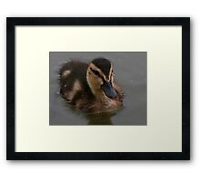 Wetting The Babies Head Framed Print